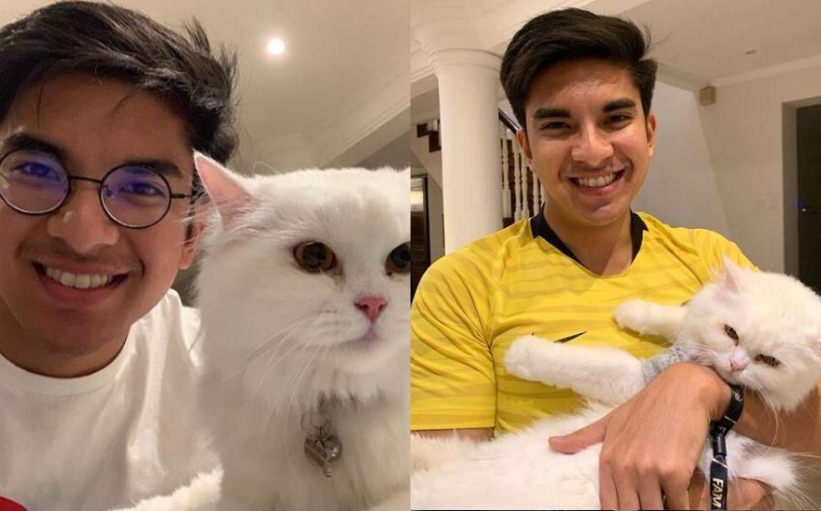 Nama Kucing Artis Malaysia 81021 Nama Untuk Kucing Comel Lucu Dan Unik